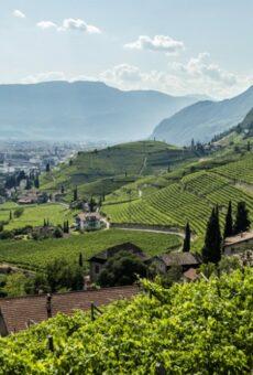 Proefpakket Knisperend Fris Loepzuiver Südtirol