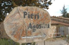 Agostina Pieri – De 15 Beste Rosso's Volgens Decanter